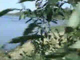 voyeur drill on the seaside