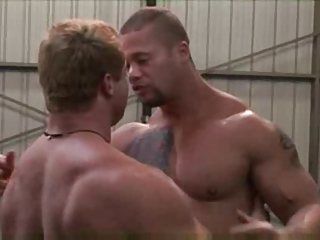 rvd horny muscle